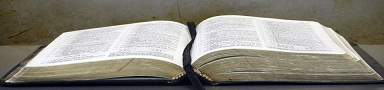 Open Bible Pages -web