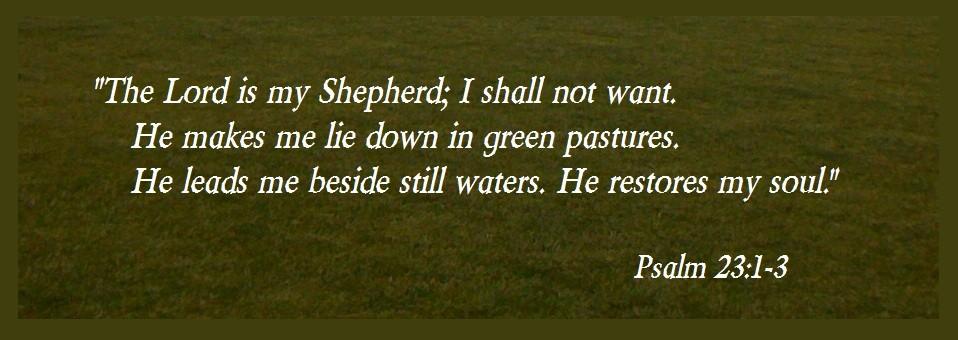 20111115 Green Pastures